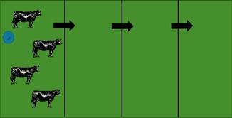 Grazing methods figure 3