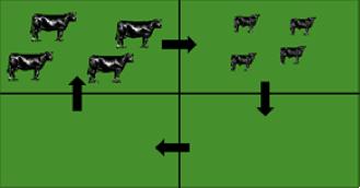 Grazing methods figure 5
