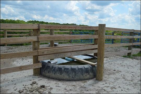 Providing Water for Beef in Rotational Grazing Systems with Tire