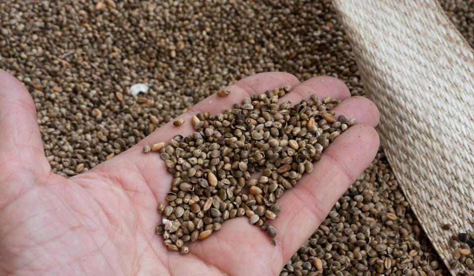 Grain Drill Calibration